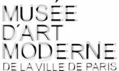 musee-art-moderne-ville-paris-expositions-billets-coupe-file-carte-pass